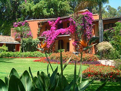 Apereo m xico 2014 for Jardines de casas quintas